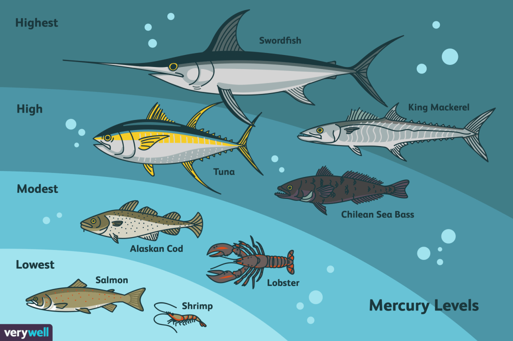 Very Well Fish Banner